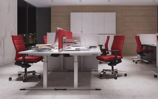DeskTop von OKA mit Sichtschutz am Arbeitsplatz