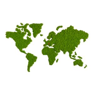 Weltkarte aus echtem Islandmoos von Flower Art